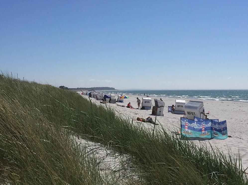 Strand auf Hiddensee im Sommer Strandkorb_Verleih